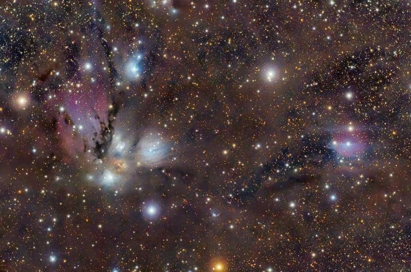 NGC 2170: Celestial Still Life