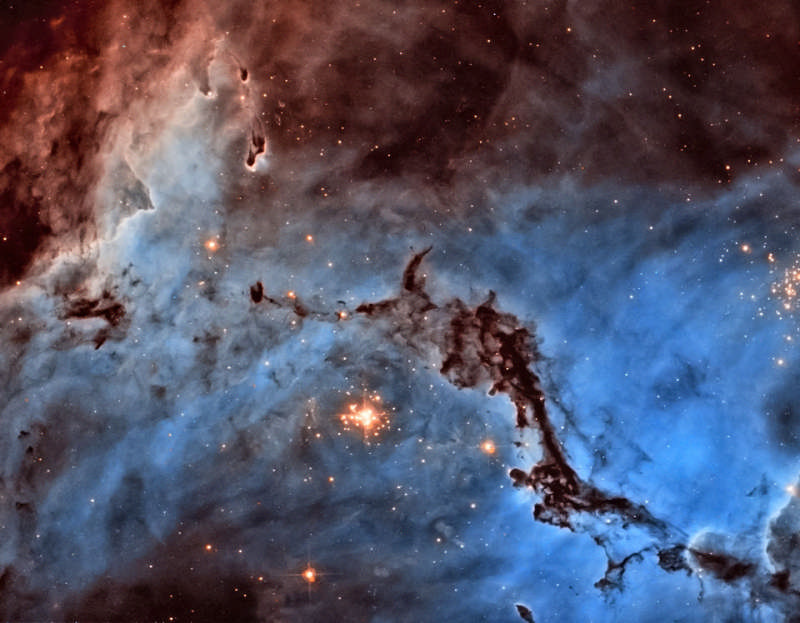 N11: Star Clouds of the LMC